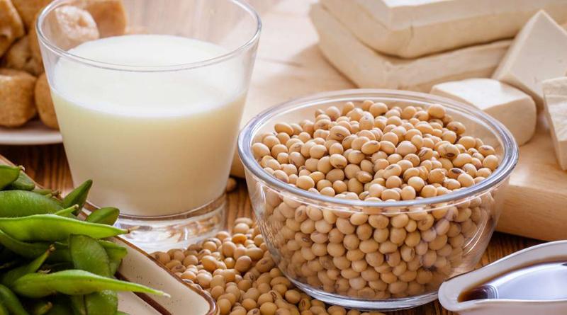 Östrojen Hormonu Eksikliği – Östrojen İçeren Bitkiler