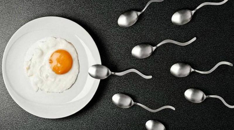 Sperm Sayısı Nasıl Arttırılır ?