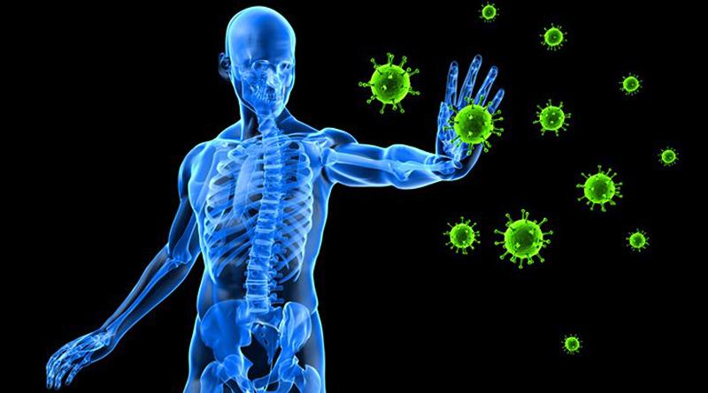 Bağışıklık Sistemini Destekleyen Vitaminler